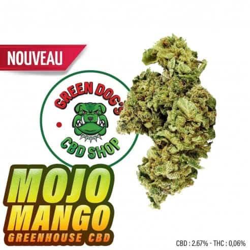 Fleurs CBD - Mojo Mango Greenhouse