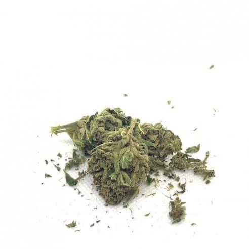 Fleurs CBD - Dynamite Greenhouse