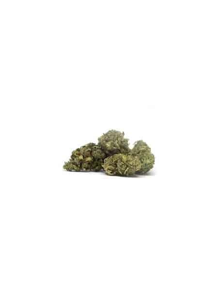 Fleurs CBD - Sweet Kiwi - Indoor