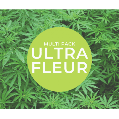 Multi Pack Milsens ULTRA fleurs